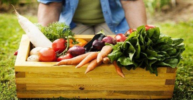 Mavibahçe'de organik pazar kurulacak